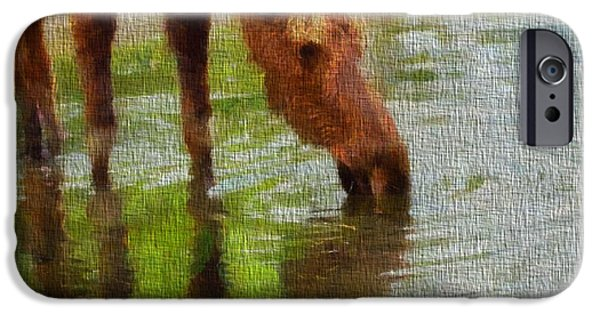 Moose In Water iPhone Cases - Moose On Canvas iPhone Case by Dan Sproul