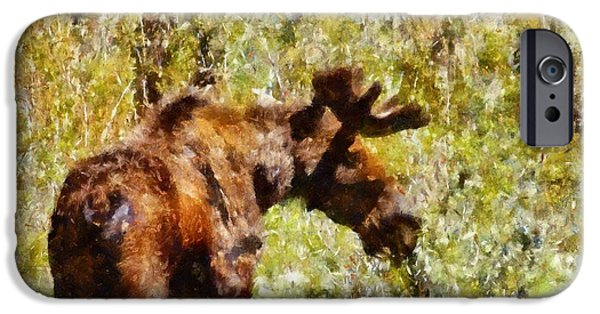Bull Moose iPhone Cases - Moose Portrait  iPhone Case by Dan Sproul