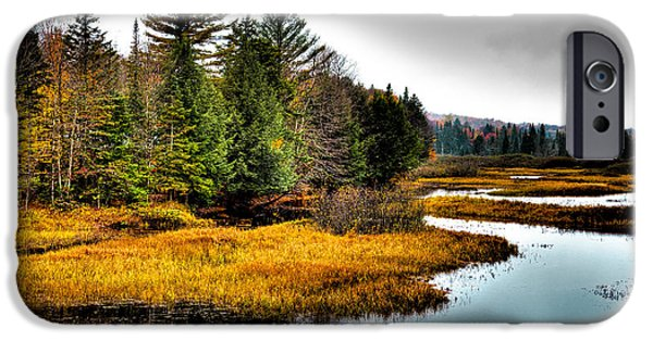 Pines iPhone Cases - Moose River in Old Forge iPhone Case by David Patterson