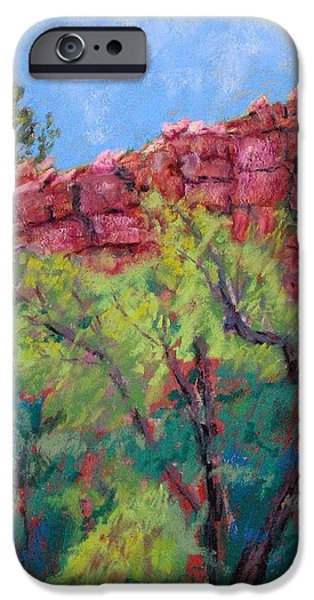 Vibrant Pastels iPhone Cases - Morning at Roses Ridge iPhone Case by Mary Benke