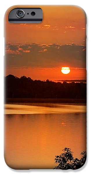 Morning Calm iPhone Case by Christina Rollo