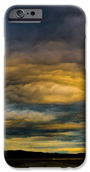 Morning Canvas iPhone Case by Mitch Shindelbower
