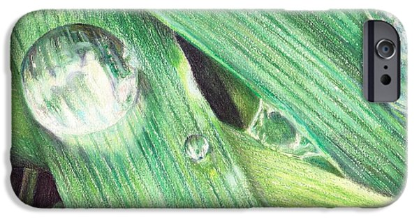 Macro Drawings iPhone Cases - Morning Dew iPhone Case by Shana Rowe