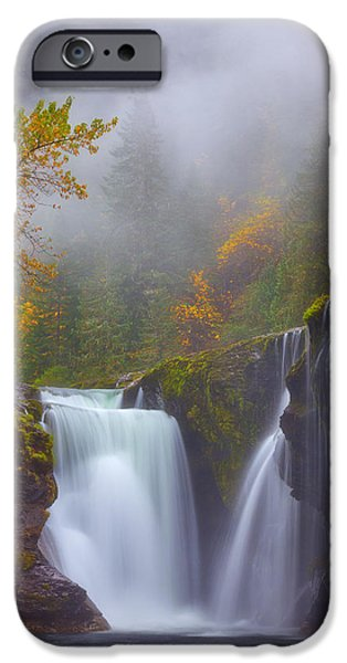 Tree Art Print iPhone Cases - Morning Fog iPhone Case by Darren  White