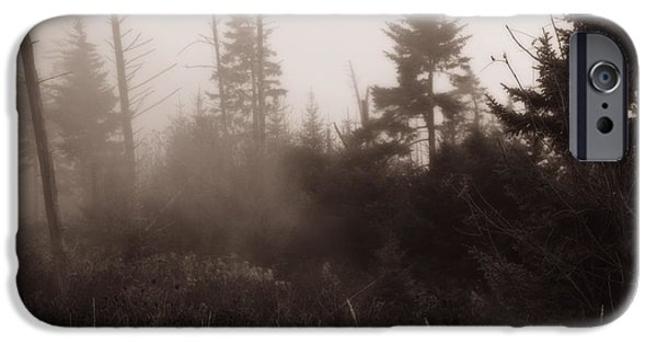 Great Mysteries iPhone Cases - Morning Fog In The Smoky Mountains iPhone Case by Dan Sproul