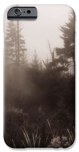 Morning Fog In The Smoky Mountains iPhone Case by Dan Sproul