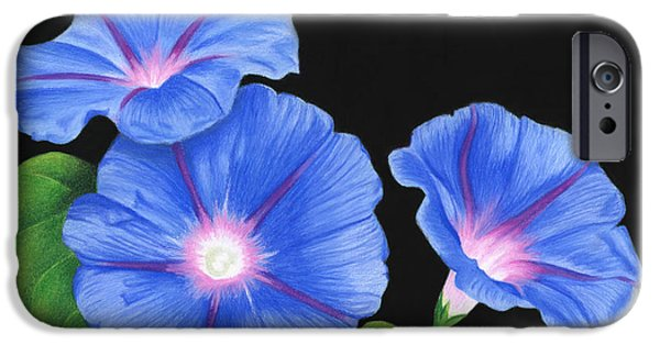 Morning Drawings iPhone Cases - Morning Glories On Black iPhone Case by Sarah Batalka