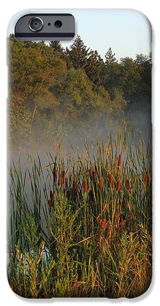 Morning Glow iPhone Case by Teresa Schomig