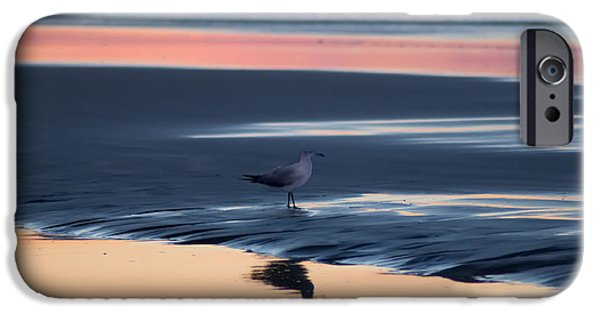 Sea Birds Digital Art iPhone Cases - Morning Gull iPhone Case by Bill Cannon