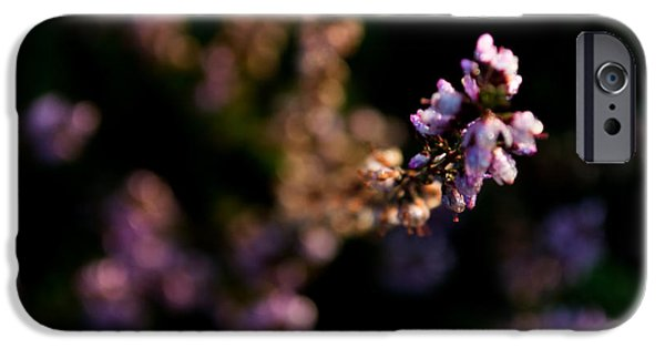 Mounds iPhone Cases - Morning Hill iPhone Case by Yarema Semaniv