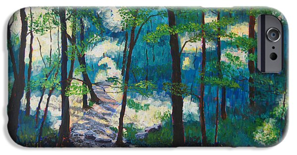 Warner Park Paintings iPhone Cases - Morning Sunshine in Park Forest iPhone Case by Arthur Witulski