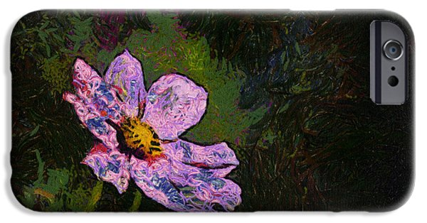Asymmetrical iPhone Cases - Morning Light On Purple Flower 04 iPhone Case by Thomas Woolworth