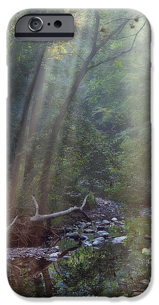 Atmosphere iPhone Cases - Morning Light iPhone Case by Tom Mc Nemar