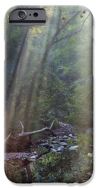 Morning Light iPhone Case by Tom Mc Nemar