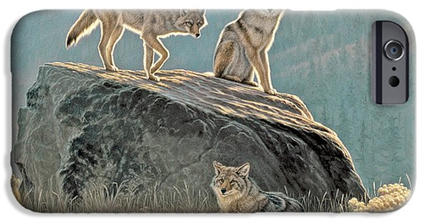 Coyote iPhone Cases - Morning Lookouts iPhone Case by Paul Krapf