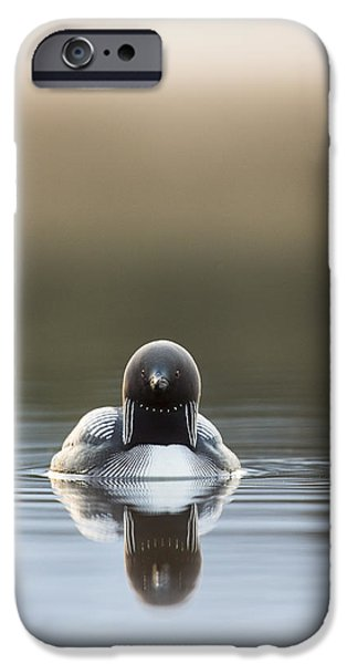 Loon iPhone Cases - Morning Mist and a Reflection iPhone Case by Tim Grams