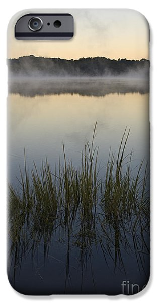 Morning Mist at Sunrise iPhone Case by David Gordon