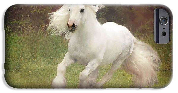 Horses iPhone Cases - Morning Mist C iPhone Case by Fran J Scott