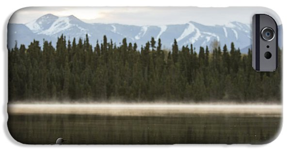 Loon iPhone Cases - Morning Mist in the Mountains iPhone Case by Tim Grams