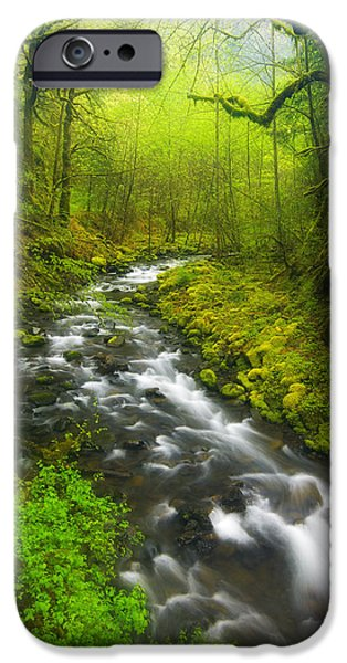 Lush iPhone Cases - Morning Misty Creek iPhone Case by Darren  White