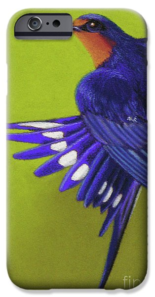 Morning Ritual barn swallow iPhone Case by Tracy L Teeter
