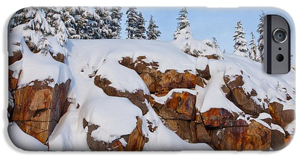 Winter Scene iPhone Cases - Morning Snow iPhone Case by Darren  White