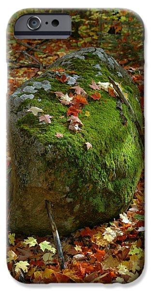 Sandra Updyke iPhone Cases - Mossy Rock iPhone Case by Sandra Updyke