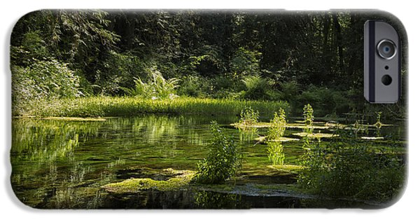 Fed iPhone Cases - Mossy Spring-Fed Pond iPhone Case by Belinda Greb