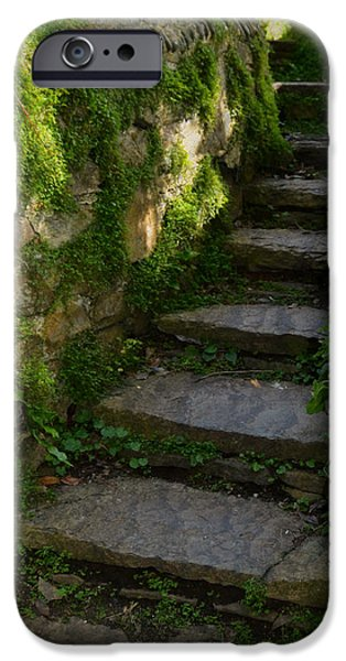 Mossy Steps iPhone Case by Carla Parris