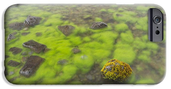 Nature Abstracts iPhone Cases - Mossy Stone In Lake Thingvallavatn iPhone Case by Bill Coster