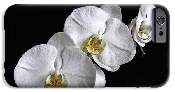 Tripple iPhone Cases - Moth Orchid Trio iPhone Case by Ron White