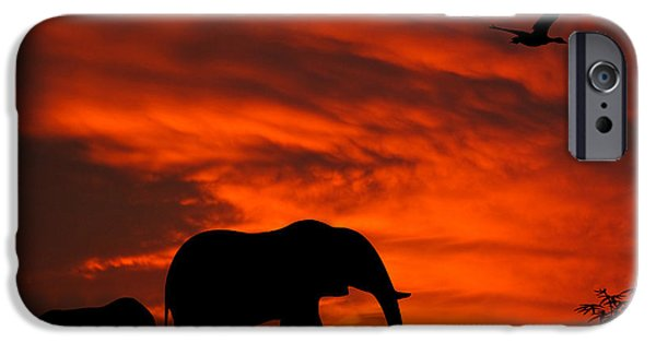 Elephant iPhone Cases - Mother and Baby Elephants Sunset Silhouette Series iPhone Case by David Dehner