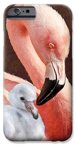 Baby Bird Digital iPhone Cases - Mother and baby flamingo iPhone Case by Jane Schnetlage