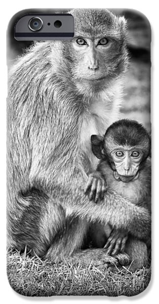 Caring Mother iPhone Cases - Mother and Baby Monkey Black and White iPhone Case by Adam Romanowicz