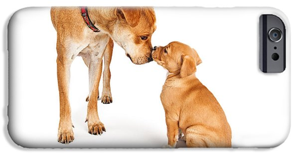 Mutt iPhone Cases - Mother Dog and Puppy iPhone Case by Susan  Schmitz