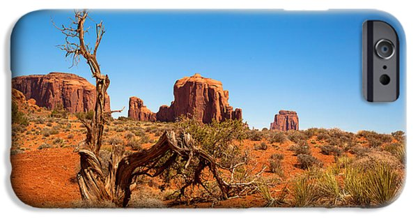 Monument Valley iPhone Cases - Moument Valley and tree stump iPhone Case by Jane Rix