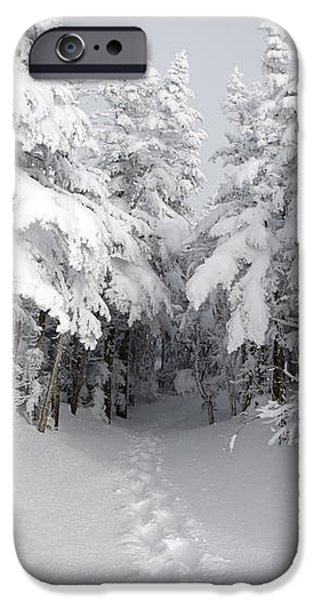 Mount Osceola Trail - White Mountains New Hampshire iPhone Case by Erin Paul Donovan