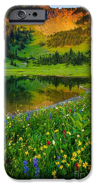 Flora iPhone Cases - Mount Rainier Lake iPhone Case by Inge Johnsson