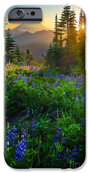 America iPhone Cases - Mount Rainier Sunburst iPhone Case by Inge Johnsson