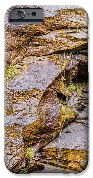 Plant iPhone Cases - Mountain close up iPhone Case by Zina Stromberg