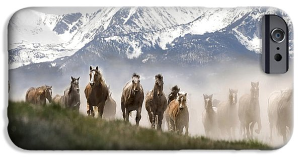 Horse iPhone Cases - Mountain Dust Storm iPhone Case by Wildlife Fine Art