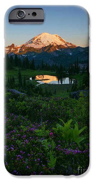 Majestic iPhone Cases - Mountain Heather Morning iPhone Case by Mike Dawson