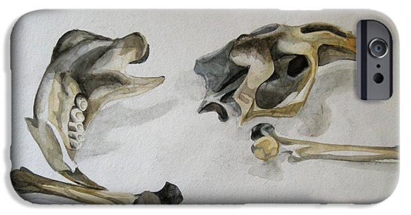 Nature Study Paintings iPhone Cases - Mouse Bones iPhone Case by Shayla Fiedler