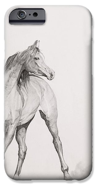 Animal Portraiture iPhone Cases - Moving Image iPhone Case by Emma Kennaway