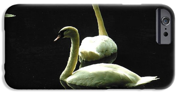 Couple iPhone Cases - Mr. and Mrs. Swan 2 iPhone Case by Britta Havens