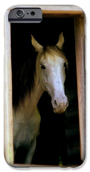 MRS. ED iPhone Case by KAREN WILES