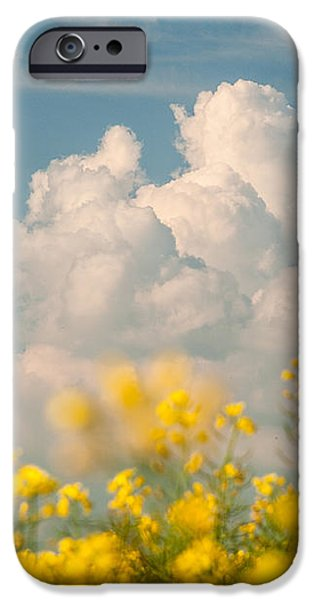 Mt Cloud iPhone Case by Davorin Mance