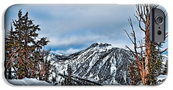 Mount Rose iPhone Cases - Mt. Rose iPhone Case by Maria Coulson