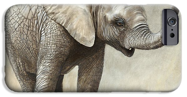 Elephant iPhone Cases - Mtoto Tembo iPhone Case by Rob Dreyer AFC