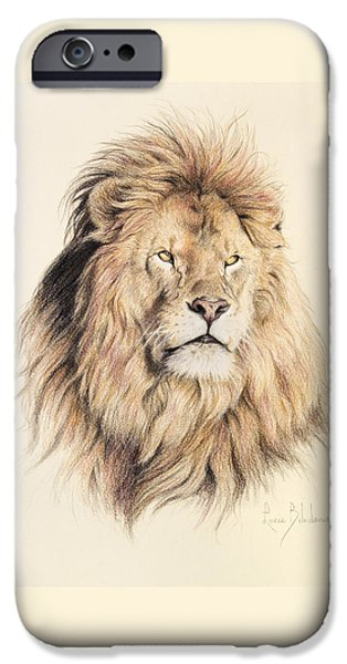 Mammals Drawings iPhone Cases - Mufasa iPhone Case by Lucie Bilodeau